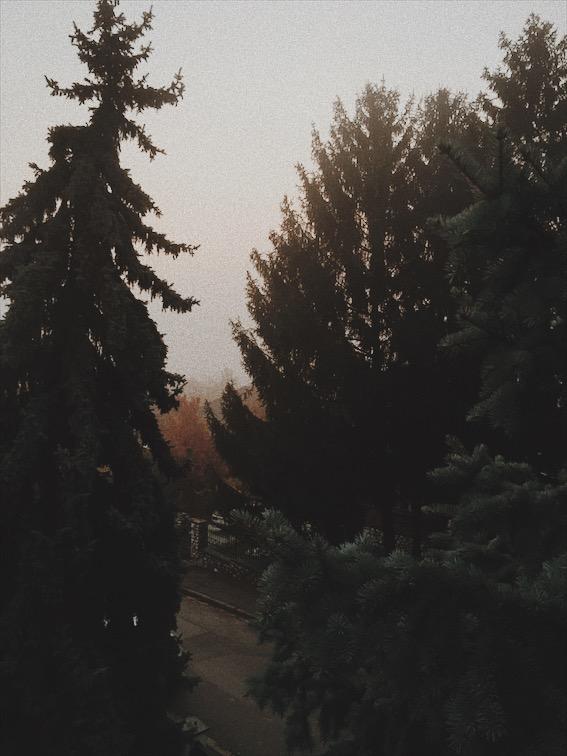 Fall-urban